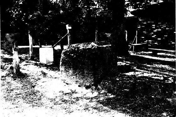 81 - Hurst Family Cemetery Greysharps Rd_06 - Shire of Eltham Heritage Study 1992