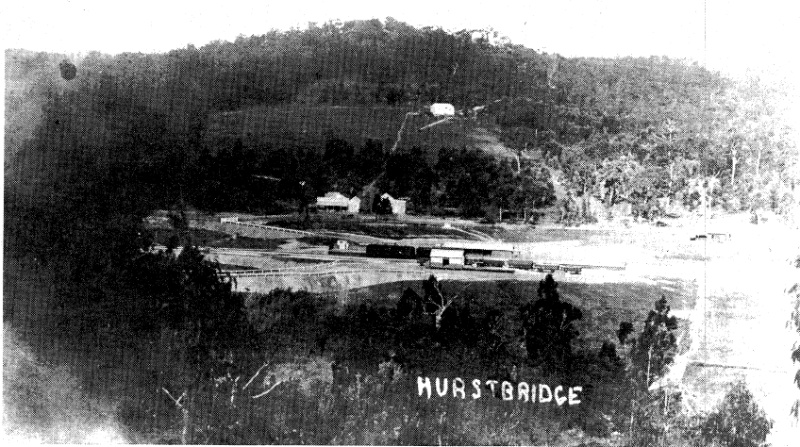 94 - Railways Residence Palm Cypress Trees Hurstbridge_02 - Old photography presumably taken in or soon after 1912 showing the Hurstbridge Railway Station and on the right hand side this house, which predates all of the nearby buildings (ELHPC No.1004) -