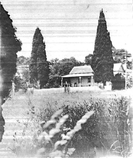 192 - Wingrove Cottage Pines 672 674 Main Rd - Old photograph (ELHPC no?) - Shire of Eltham Heritage Study 1992