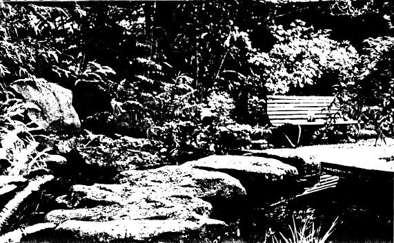 250 - Gordon Ford Property and Garden Eltham 03 - Shire of Eltham Heritage Study 1992