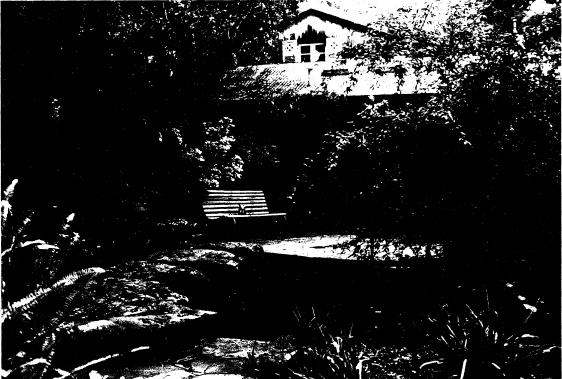 250 - Gordon Ford Property and Garden Eltham 04 - Shire of Eltham Heritage Study 1992