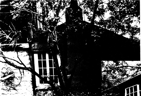250 - Gordon Ford Property and Garden Eltham 05 - Shire of Eltham Heritage Study 1992