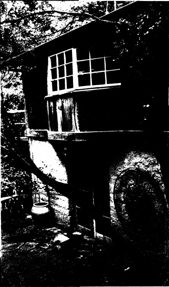 250 - Gordon Ford Property and Garden Eltham 06 - Shire of Eltham Heritage Study 1992