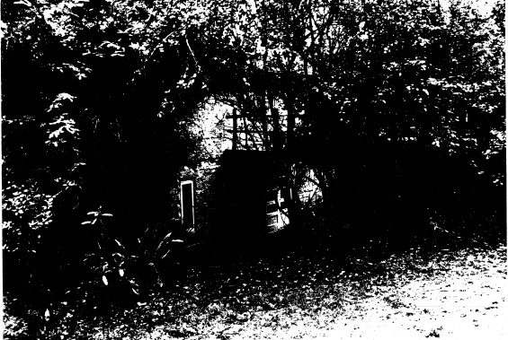 250 - Gordon Ford Property and Garden Eltham 08 - Shire of Eltham Heritage Study 1992