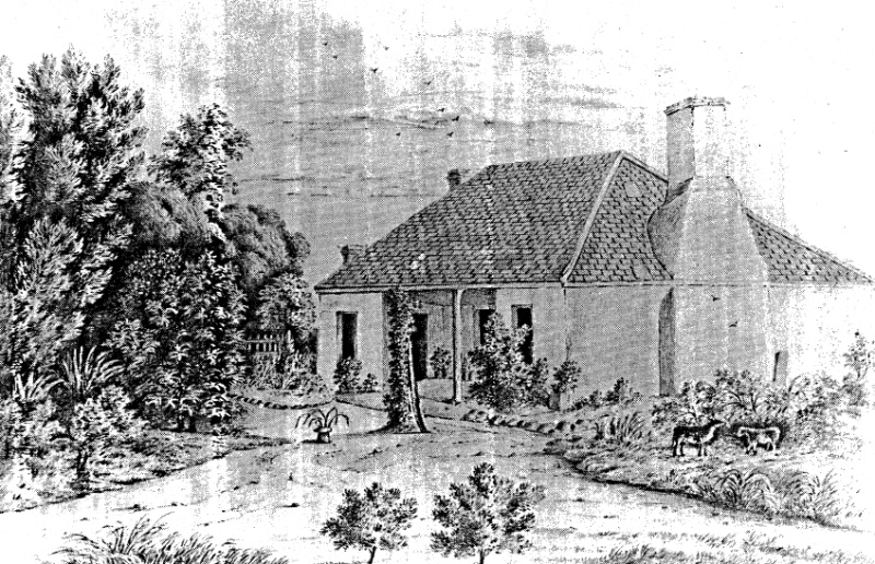 268 - Sweeneys Cottage Eltham 03 - Drawing of Sweeney's Cottage - Origins unknown - Shire of Eltham Heritage Study 1992