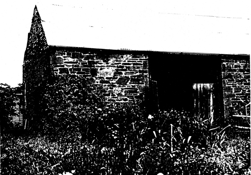 268 - Sweeneys Cottage Eltham 04 - 1949? photograph of the barn - Shire of Eltham Heritage Study 1992