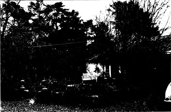 268 - Sweeneys Cottage Eltham 11 - Shire of Eltham Heritage Study 1992