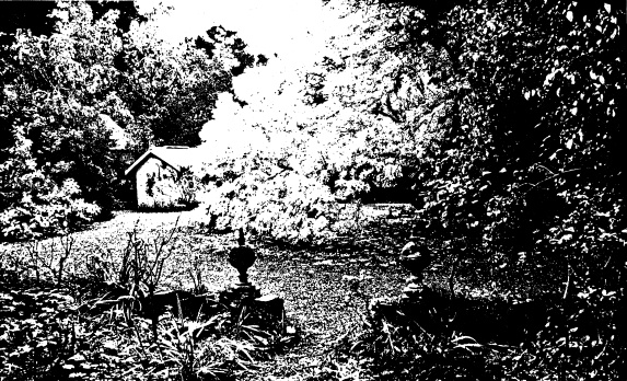 268 - Sweeneys Cottage Eltham 18 - Shire of Eltham Heritage Study 1992