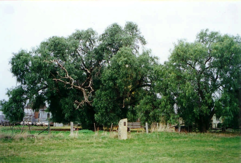 NV 08 - Shire of Northern Grampians - Stage 2 Heritage Study, 2004