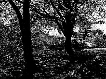 HO213 - Plenty State School 4093- former School from south, at rear behind oaks