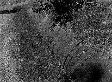 MAROONDAH AQUEDUCT - Nillumbik Shire Heritage Study 1997