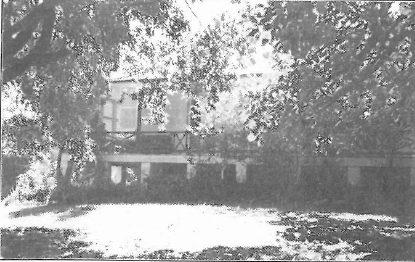Warringah, 1981, 80 Mercer Street, Queenscliff