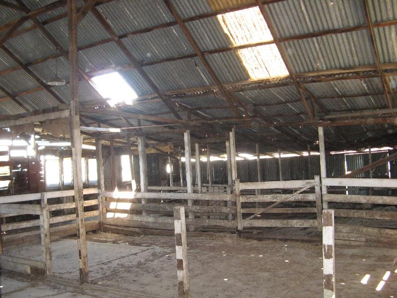 Clonard homestead complex_milking/shearing shed interior