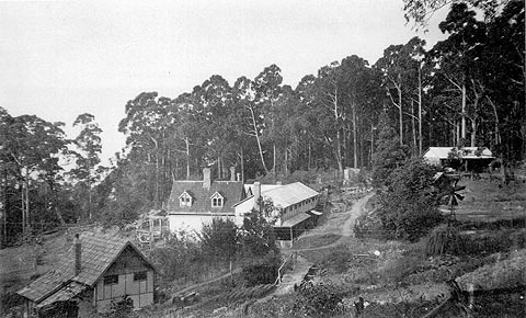 McCubbin_fountainebleau early photo c1920.jpg