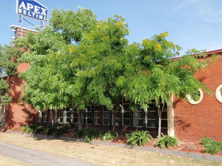 HO129 (1) - Hopkins Odlum, 268 Geelong Road, West Footscray.JPG
