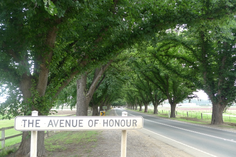 4957_Bacchus Marsh Avenue of Honour_25 December 2009_HV_019.JPG
