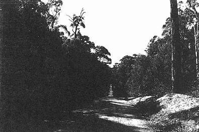 Ambler Lane (FWD), Break Neck Gully (North of O'Brien's Crossing).