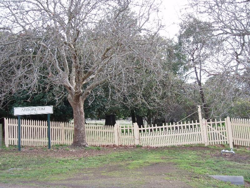 4374_Camperdown Botanic Gardens