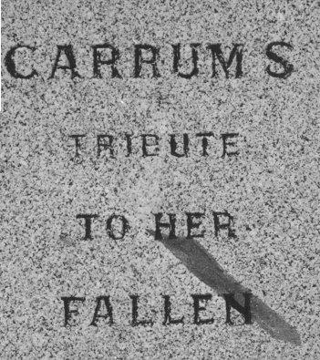 Carrum 5.jpg