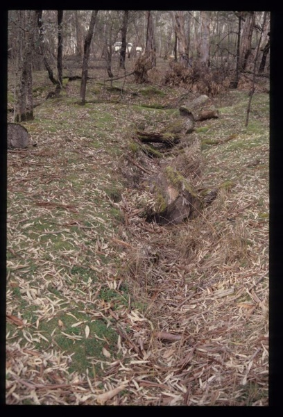 GREEN CREEK ROAD SAWMILL