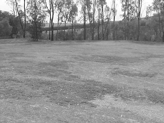 Site 128 - Chisholm shelter shed site.jpg