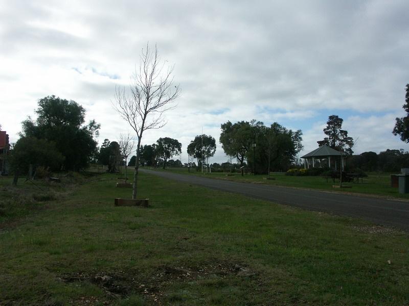 Laidller Reserve & War Memorial, Avenue of Honour