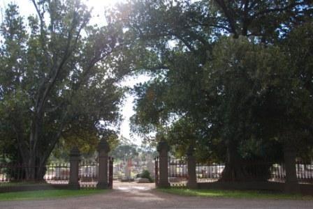 G13068 White Hills Cemetery