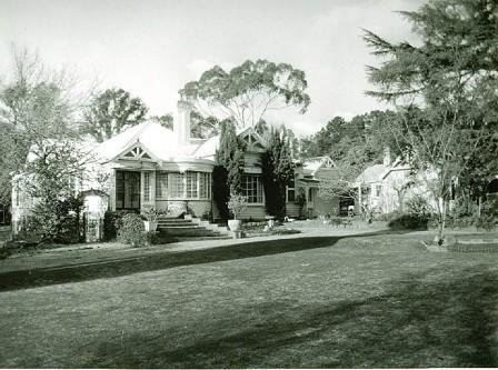 B3229 Forest Lodge