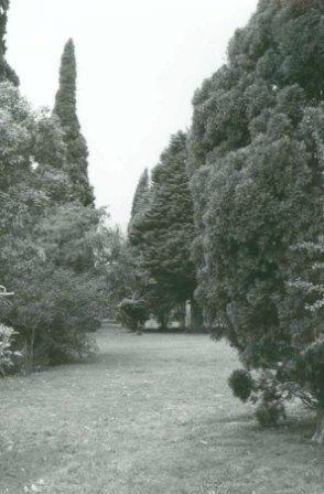 L10009 Walter Burley Griffin Estates