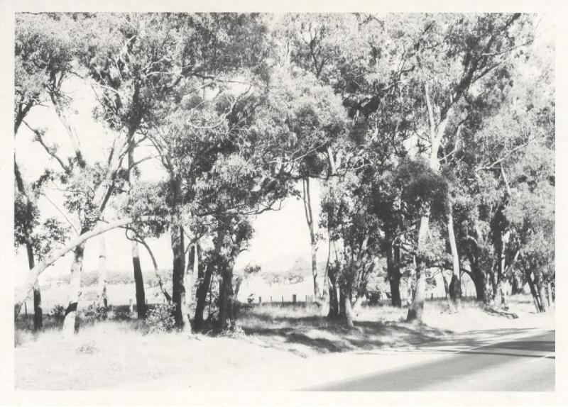 Hume Highway