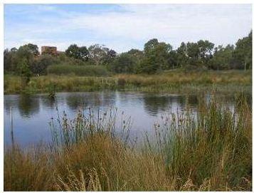rp Trim Warren Tam-Boore wetland system.jpg
