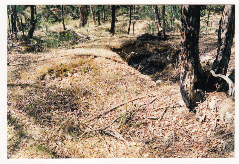 Alluvial Gold Mining Remains end Blue House Rd Colour 2 - Shire of Eltham Heritage Study 1992