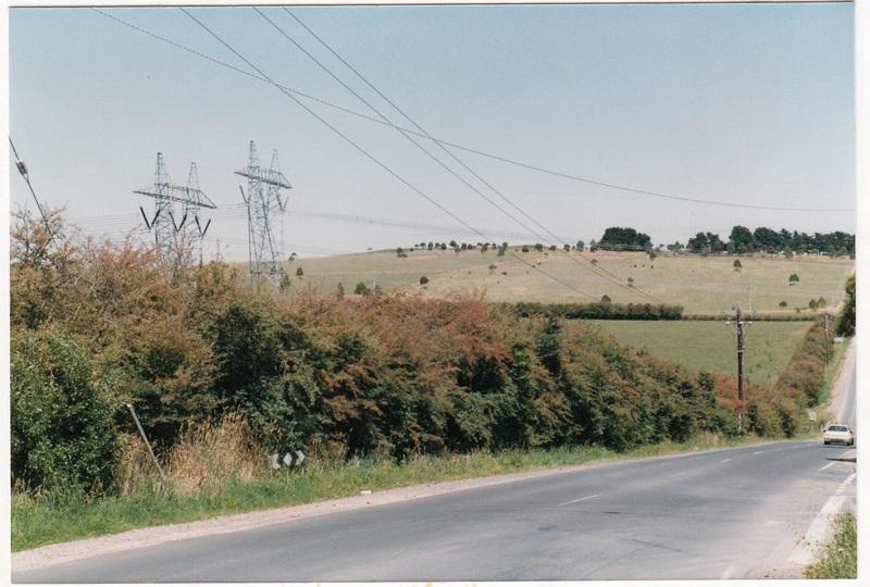 Hawthorn Hedges in Kangaroo Ground Colour 3 - Shire of Eltham Heritage Study 1992