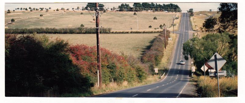 Hawthorn Hedges in Kangaroo Ground Colour 1 - Shire of Eltham Heritage Study 1992