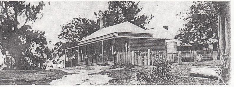 Kangaroo Ground General Store Post Office Pines Black & White 2 - Shire of Eltham Heritage Study 1992