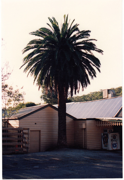 St Andrews Hotel Palm KangGround St Andrews Rd Colour 6 - Shire of Eltham Heritage Study 1992