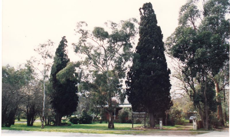 Wingrove Cottage Pines 672 674 Main Rd Colour 2 - Shire of Eltham Heritage Study 1992