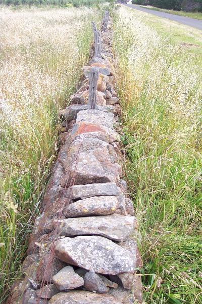 Wall C62