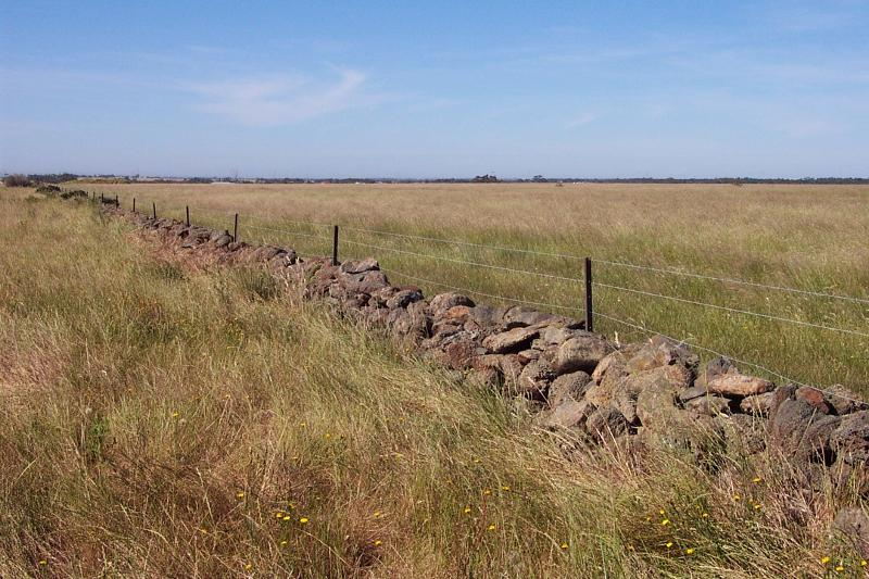 Dry Stone Wall G84