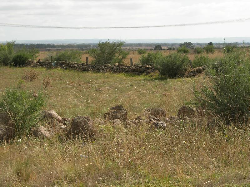 Dry Stone Wall K166 - south boundary