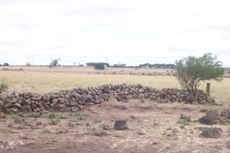 Dry Stone Wall F19 - walls in centre of paddock