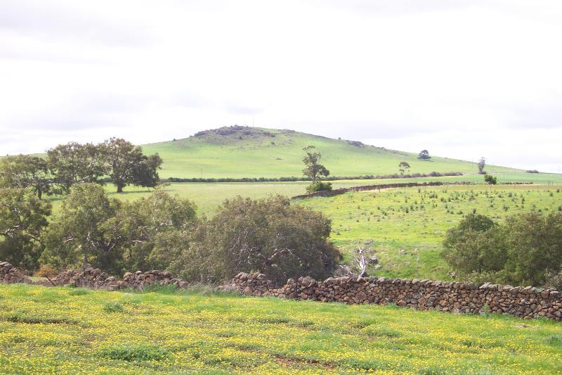Dry Stone Wall A275