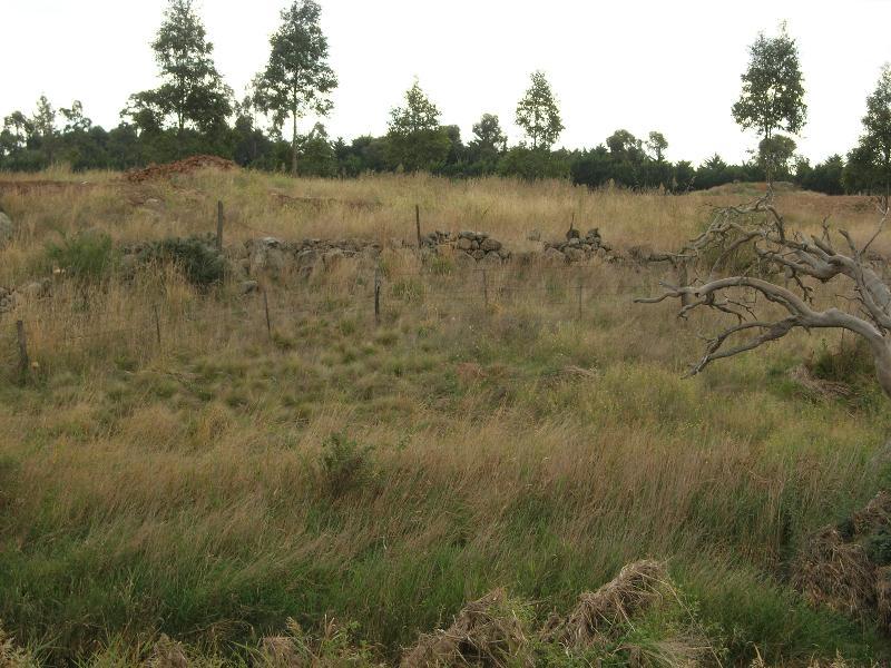 Dry Stone Wall N228 - Internal Wall - North of the Kororoit Creek