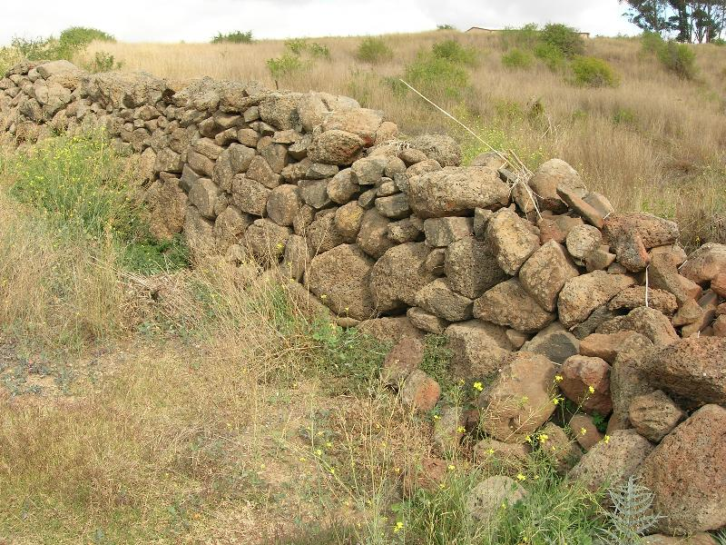 Dry Stone Wall N229 - Property Boundary