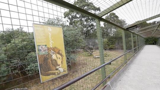 Lion enclosure prior to demolition, 2014.jpg