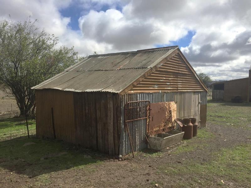 2017, shed.jpg