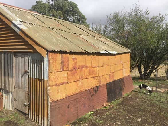 2017, shed, kerosene can cladding.jpg
