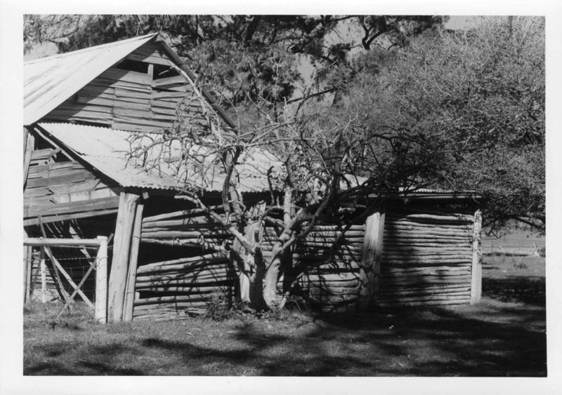 Barn (1972).jpg