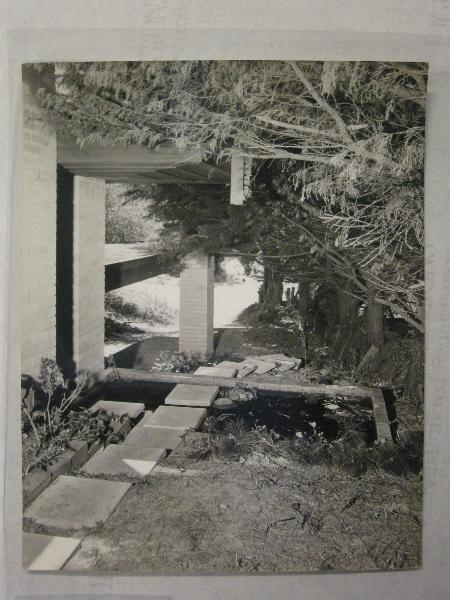 c1961 (2).jpg