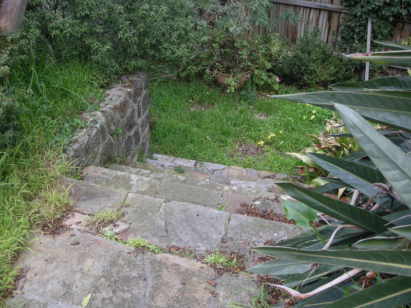 2017, rear garden.JPG